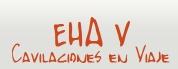 EHA V